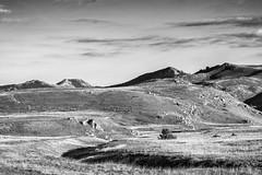 Monochromatic hills (Mario Ottaviani Photography) Tags: sony sonyalpha italy italia paesaggio landscape travel adventure nature scenic exploration view vista breathtaking tranquil tranquility serene serenity calm marioottaviani moocromo monochrome black white blackwhite blackandwhite biancoenero hills colline