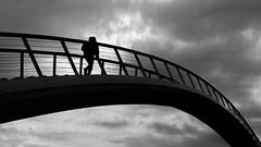 skywalk (Eric Spies) Tags: backlight backlit gegenlicht controluce brücke bridge nijmegen nimwegen clouds wolken silhouette silhouetten silhouettes monochrom monochrome mono sky himmel fujifilm fujinon fuji xt10 xc xc1650 blackwhite bw schwarzweiss kontrast kontraste contrast contrasts treppe stairs stairway wandelbrug brug ooijpoort ooypport ooij ooy ooijpolder ooypolder ooyseschependom waal waalstrand niederlande nederland netherlands guelders gelderland skywalk skywalking skywalker street ooypoort