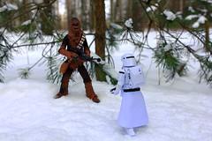 """Step aside, beast!"" (Leo Goubine) Tags: starwars theforceawakens chewbacca chewie snow winter snowtrooper stormtrooper blackseries toyphotography acba toys actionfigures"