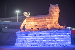 2017 Harbin Ice World (Tony Shi, Life) Tags: harbin china heilongjiang harbincity heilongjiangprovince iceandsnowworld ice snow world sculpture festival annual worldfamous iceworld harbininternationaliceandsnowsculpturefestival asia art travel