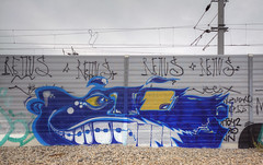 Blue Head (Herbalizer) Tags: blue head graffiti vienna wien austria österreich wall wand trackside wiener linie öbb remus