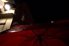 Amsterdam (vjbender) Tags: amsterdam frühling nacht regentropfen roter schirm regenschirm