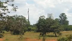 An other view to the National Congress in Brasilia! (ANNE LOTTE) Tags: brasília fahne congressonationalbrasília cerrado savanne bäume arvores trees
