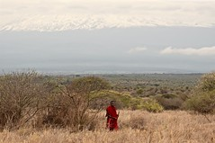 The Pride of East Africa (The Spirit of the World) Tags: masai man warrior kilimanjaro kili mountain clouds landscape snow savanna scrub bush kenya amboselinationalpark park nationalpark eastafrica africa earlymorning morning tribe tribesman