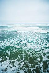 Pacific 124/365 (*Jilltoo) Tags: ocean sea newzealand mist weather waves gloomy stclair stormy pacificocean foam getty otago dunedin