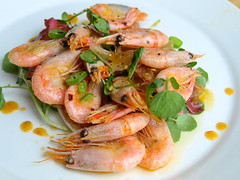 Seafood with Hot Sauce, Watercress, Chicory (Tony Worrall Foto) Tags: uk sea england food hot fun photo dish image north cook shell tasty plate prawns eaten eat chef seafood taste cooked bits seas foodie flavour sorted tasr eeaten 2013tonyworrall