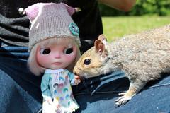 61-365 Feeding the squirrels!