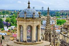 Sville 151 vue depuis le sommet de l'ancien minaret devenu clocher de la Cathdrale (paspog) Tags: sevilla spain roofs palmtrees andalusia espagne jardins sville spanien palmiers andalousie toits decken gadens mygearandme