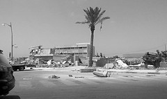 Bunker Palace (Le*Gluon) Tags: bw concrete ruins palmtree revolution libya tripoli destroyed bombed libye arabspring