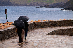Three walking in Collioure (Paco CT) Tags: people france rain umbrella walking banda la three lluvia agua gente thing object tres collioure paraguas cosa fra objeto caminando paseando languedocroussillon pyrnesorientales ctevermeille 2013 pacoct