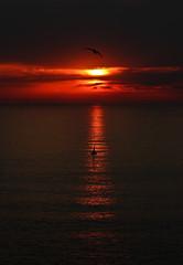 Islas Cíes (KaisPhotography) Tags: sunset summer españa naturaleza sun sol de mar spain bokeh verano puesta vigo fotografía océano ría islascies 2013 550d