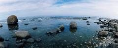Seashore - right (schoeband) Tags: sea film 35mm rocks sweden schweden sverige seashore land panoramiccamera fujichromeprovia100f horizons3pro kalmarln grankullavik norraudde storagrundet