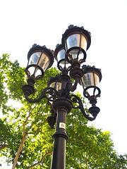 City of Barcelona, Spain (kyweb) Tags: barcelona street plaza light tree art lamp architecture square design spain streetlight europe streetlamp catalonia larambla gaudi avenue citycenter oldtown rambla   antonigaudi   ramblademar          laslambras