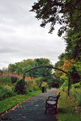 Botanic Garden (Sara Albo) Tags: ireland belfast northern botanicgarden norte irlanda