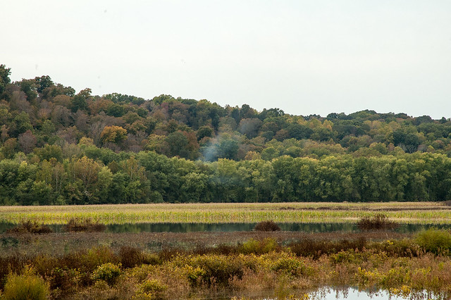 Stillwater Marsh - October 2013