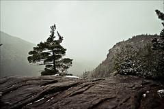 Nubble (HckySo) Tags: mountain giant nikon adirondacks joyce mitchell nikkor nubble d90 1755mm