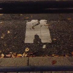 (anjamation) Tags: leaves night october drain lookingdown unaltered theotherside inthegutter 2013 iphone5 guttermagic rendestenen