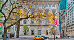 Autumn-D700-CZ-21-59th-2nd_0287c (JB Artful Photo) Tags: park nyc newyorkcity autumn newyork color fall colors beautiful pretty centralpark manhattan newyorknewyork nikond700 distagont2821 carlzeiss21mm josephbuttigieg