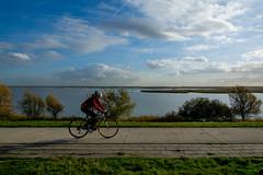 _DSC0422 (durr-architect) Tags: sea sky water clouds along dike lelystad almere oostvaardersplassen markermeer