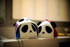 Blythe caps-panda