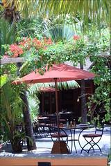 IMG_2612 (federica.piersimoni) Tags: blogger mauritius blogtour maublogtour13