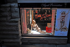Agent Provocateur - Holiday (silvrmn) Tags: christmas shopping iso100 holidays f25 goldfinger 1100sec sonynex7 zeiss2418za