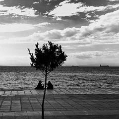 7537 (pkomo) Tags: street sea pkomo venustreet