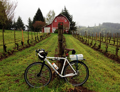 wine pick up (tangocyclist) Tags: bicycle oregon vineyard dundee winery redhills