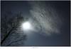 De wolk (5D319404) (nandOOnline) Tags: bomen nederland natuur sirius orion jupiter peel hemel perseus limburg landschap wolk ster maan stier sterren planeet sterrenbeeld maanlicht grootepeel sterrenbeelden ospeldijk