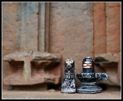Sivalingam and Nandi : Hubli : Chandramouleswara Temple (indianature13) Tags: india nandi shiva karnataka siva lingam linga hubli hoysala ancienttemple shivling 2013 sivalingam hoysalatemple indianature ancienttemplehubli hoysalatemplehubli chandramouleshwaratemple discoverhubli hiddenhubli chandramouleswaratemple chandramouleswara