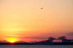 Jet and the evening sun (ELCAN KE-7A) Tags: bridge sun japan tokyo evening gate pentax jet    haneda   2013   k5s