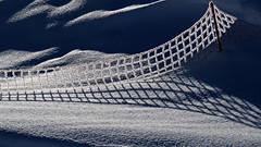 winter patterns (upsa-daisy) Tags: