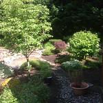 "Myrtle and applewood hills <a style=""margin-left:10px; font-size:0.8em;"" href=""http://www.flickr.com/photos/117326093@N05/12824067013/"" target=""_blank"">@flickr</a>"