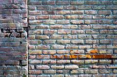 Voodoo Doughnuts Wall 2 of 4 (Orbmiser) Tags: brick wall glitter oregon portland spring nikon peeling d90 55200vr