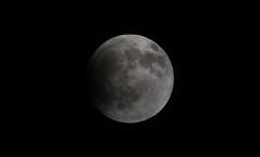 The dark side of the moon (Antonio Rmz) Tags: moon mexico eclipse space astronomy veracruz lunar