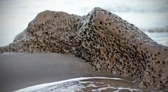 Vesicular Basalt (Paul J's) Tags: sea black beach rock sand tasman volcanic basalt taranaki waihi vesicular