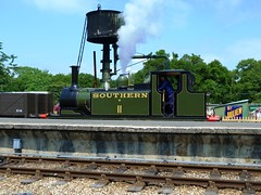 W11 'Newport' at Havenstreet (Richard and Gill) Tags: station watertower terrier newport isleofwight locomotive sr steamengine steamrailway preservation w11 iow southernrailway tankengine stroudley havenstreet lbscr heritagerailway isleofwightsteamrailway iwsr a1x