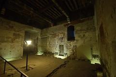 0303 - Europatour 2014 - Frankreich - Avignon - Pabstpalast (uwebrodrecht) Tags: france castle frankreich europa schloss avignon palast uwe papst brrodrecht