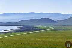 Soda Lake and the Carrizo Plain (randyandy101) Tags: isolation lake reflection shimmering shoreline shore california carrizonationalmonument carrizoplains spring green greenfields greenhills road trail water smog empty