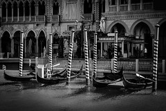 Venice or Vegas (Tim with a Camera) Tags: thevenetian venetian lasvegas vegasstrip vegas gondolas boats water