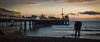 lost and found.....Brighton (stocks photography.) Tags: michaelmarsh brighton