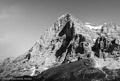 Eiger (Laurontario) Tags: elvetia europe schweiz switzerland eiger nordwand thealps