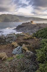 Posto di guardia (Sascha Fiori) Tags: seascape porto ferro alghero mare costa roccia torre paesaggio nuvole sardegna canon