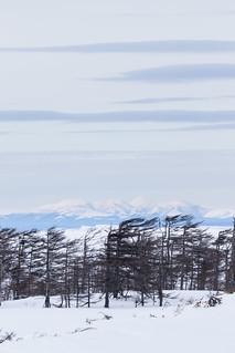 Sakhalin bay coast