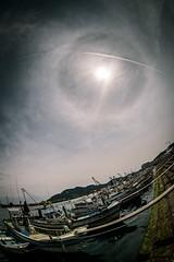 大海漁港にてーAt Oomi Fishing port (kurumaebi) Tags: yamaguchi 秋穂 山口市 nikon d750 nature landscape sea halo ハロ