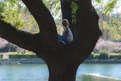Primavera in città sul suo albero (Ajelen Foto) Tags: albero amico bambina primavera lago città roma ajelen