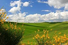 (claudiophoto) Tags: italy panorama landscape landscapes florence tramonto may tuscany pienza toscana valdorcia paesaggi paesaggio sanquiricodorcia paesaggitoscana fototoscana blinkagain fotovaldorcia springtuscany