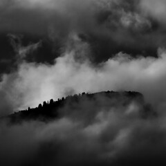 Cloud Shroud (arbyreed) Tags: trees blackandwhite bw mountain monochrome clouds cloudy peak squareformat mysterious squawpeak wasatchrange achromatic utahcountyutah arbyreed mountainwithclouds mooddy