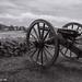 Confederate Artillery on Seminary Ridge