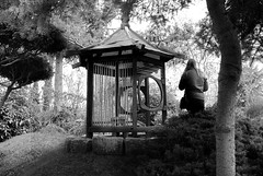 Forest Rendezvous (Pixelglo Photography) Tags: wood blackandwhite bw monochrome japan forest woodland japanese mono blackwhite nikon waiting alone seat meeting outhouse meetingplace pureland d80 waitingforsomeone nikond80 purelandjapanesegarden japaneseouthouse